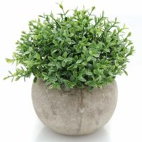 Lifelike Potted Plant